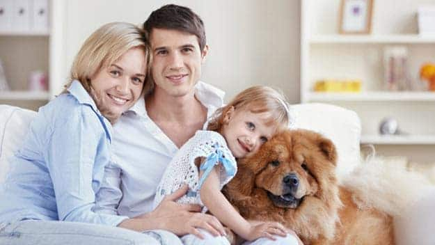 Wills & Trusts dog-young-family Direct Wills Mayfair